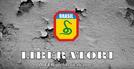 Liberatori: A FEB Vista Pelos Italianos (Liberatori: A FEB Vista Pelos Italianos)