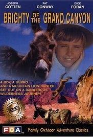 O Brilho do Grand Canyon - Poster / Capa / Cartaz - Oficial 1