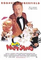 Um Maluco Está no Ar (Meet Wally Sparks)