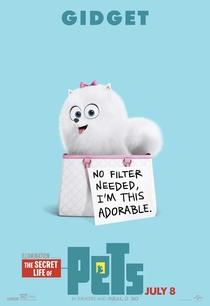 Pets: A Vida Secreta dos Bichos - Poster / Capa / Cartaz - Oficial 10