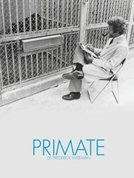 Primate (Primate)