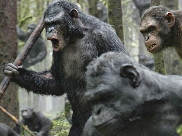 Os símios estão armadas em novas imagens de Planeta dos Macacos: O Confronto