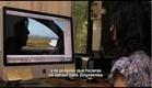 Clay Mendoza, Victoria - Sophie Calle, sin título [2012]