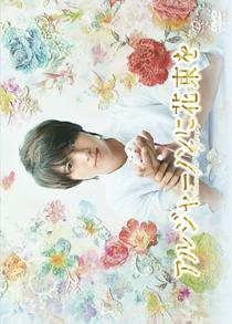 Algernon ni Hanataba wo - Poster / Capa / Cartaz - Oficial 2