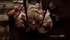 Da Vinci's Demons New York Comic Con Trailer [HD]