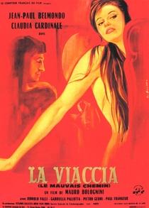 Caminho Amargo - Poster / Capa / Cartaz - Oficial 1