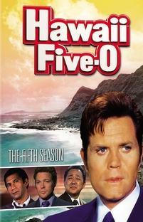 Hawaii Five-O (5ª Temporada) - Poster / Capa / Cartaz - Oficial 1