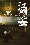 Amor Até as Cinzas (Jiang hu er nv)
