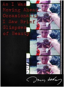 As I Was Moving Ahead Occasionally I Saw Brief Glimpses of Beauty - Poster / Capa / Cartaz - Oficial 2