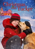 Natal Feliz (Christmas With Tucker)