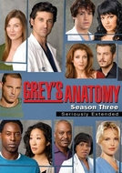 Grey's Anatomy (3ª Temporada) (Grey's Anatomy (Season 3))