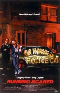 Dois Policiais Em Apuros - Poster / Capa / Cartaz - Oficial 1