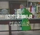 A Mulher Invisível (The Invisible Woman)