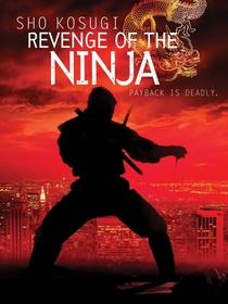 A Vingança do Ninja - Poster / Capa / Cartaz - Oficial 4