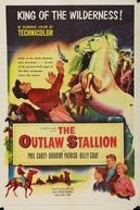O Rei da Serra (The Outlaw Stallion)