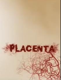 Placenta - Poster / Capa / Cartaz - Oficial 1