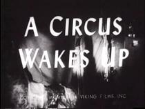 A Circus Wakes Up - Poster / Capa / Cartaz - Oficial 1