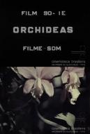 Orquídeas (Orchídeas)