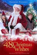 O Resgate dos Desejos de Natal (48 Christmas Wishes)