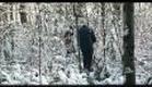 DOMAINE, un film de Patric Chiha-Bande Annonce HD