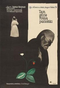 Morangos Silvestres - Poster / Capa / Cartaz - Oficial 12