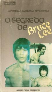 O Segredo de Bruce Lee - Poster / Capa / Cartaz - Oficial 2
