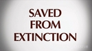 Salvos da Extinção (Saved from Extinction)