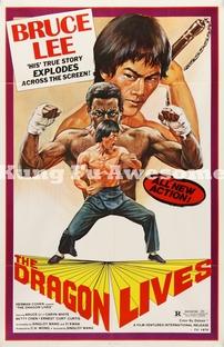Bruce Lee: O Homem e o Mito - Poster / Capa / Cartaz - Oficial 5