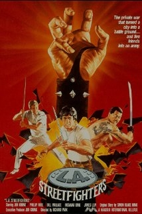Los Angeles Streetfighter - Poster / Capa / Cartaz - Oficial 1