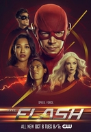 The Flash (6ª Temporada) (The Flash (Season 6))