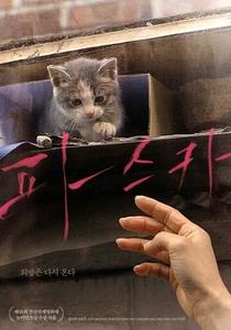 Dois Amantes e um Gato  - Poster / Capa / Cartaz - Oficial 1