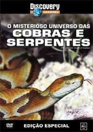 O Misterioso Universo das Cobras e Serpentes - Poster / Capa / Cartaz - Oficial 1