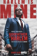 The Godfather of Harlem (The Godfather of Harlem)