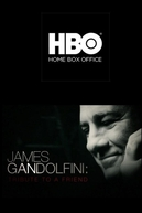 James Gandolfini: Tribute to a Friend (James Gandolfini: Tribute to a Friend)