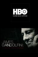 James Gandolfini: Tribute to a Friend (James Gandolfini: Tribute to a Friend)