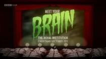 Conheça Seu Cérebro - Poster / Capa / Cartaz - Oficial 1
