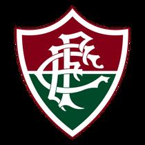 Fluminense Football Club - Centenário de uma Paixão - Poster / Capa / Cartaz - Oficial 1