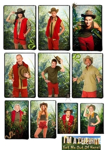 I'm a Celebrity...Get Me Out of Here! - Temporada 13 - Poster / Capa / Cartaz - Oficial 1
