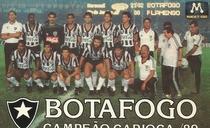Botafogo - Campeão Invicto 89 - Poster / Capa / Cartaz - Oficial 2