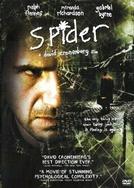 Spider - Desafie Sua Mente
