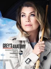Grey's Anatomy (12ª Temporada) - Poster / Capa / Cartaz - Oficial 1
