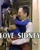 Love, Sidney (1ª Temporada)  (Love, Sidney  (Season 1))