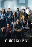 Chicago P.D. Distrito 21 (3ª Temporada) (Chicago P.D. (Season 3))