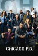 Chicago P.D. Distrito 21 (3ª Temporada)