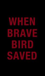 When Brave Bird Saved - Poster / Capa / Cartaz - Oficial 1