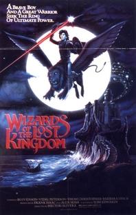 Os Guerreiros do Reino Perdido - Poster / Capa / Cartaz - Oficial 1