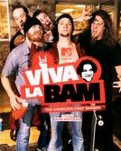 Viva La Bam (1ª Temporada) (Viva La Bam (1ª Temporada))