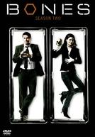 Bones (2ª Temporada) (Bones (Season 2))
